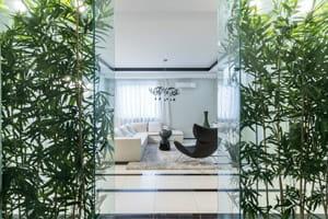 Нежный бамбук