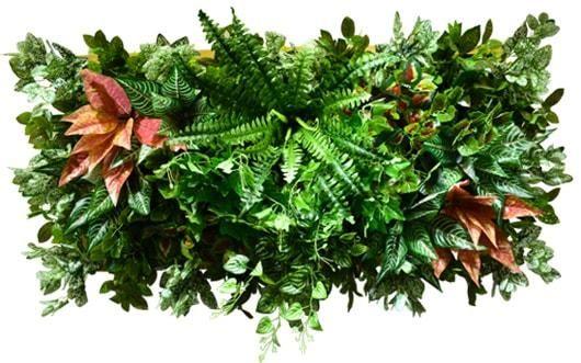 Картина из растений