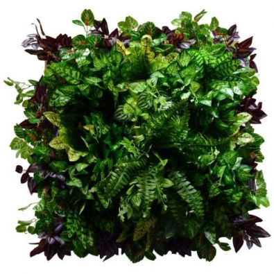 Фитокартинаискусственных растений