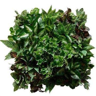 Панель из искусственных растений