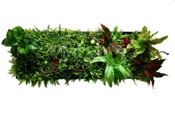 Панно из искусственных растений Ф5582