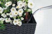 Полив растений в Balconera