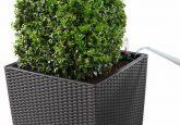 Полив растений проще не бывает