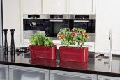 Томаты и зелень на кухне с Delta 20