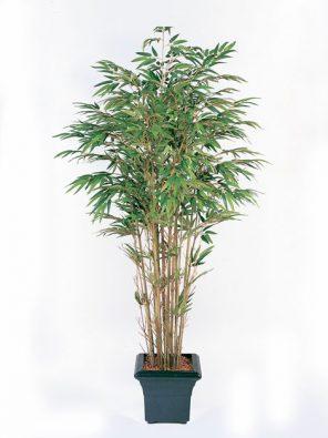 Бамбук натуральный