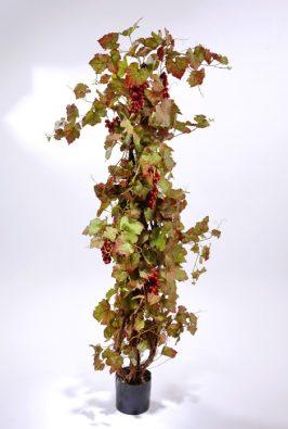Виноградная лоза с красным виноградом 160 см