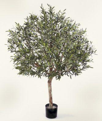 Олива натуральная топиари с плодами
