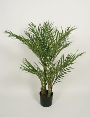 Пальма Арека 120 см