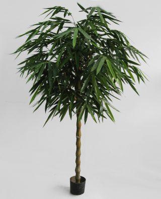 Бамбук 170см