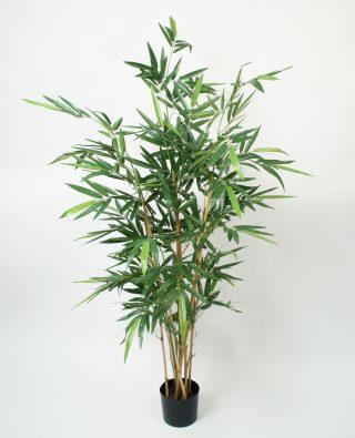 Бамбук 150 см