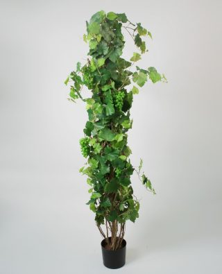 Дерево виноградное 180 см