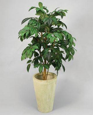 Искусственное кофейное дерево 170 см