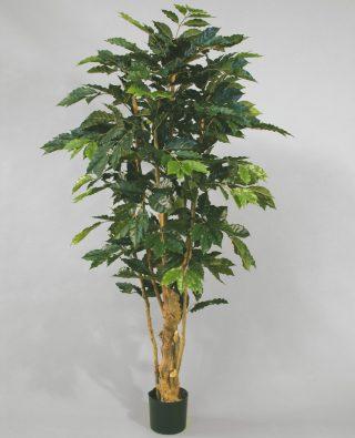 Искусственное кофейное дерево 140 см