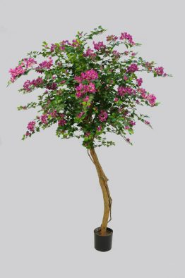 Дерево Бугенвилии 160см