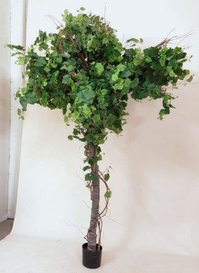 Дерево виноградное 280 см
