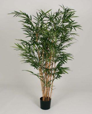 Бамбук 240 см