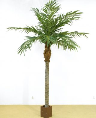 Пальма 330см