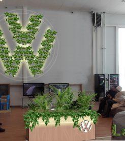 Озеленение авто салона