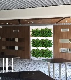 Озеленение бизнес центров