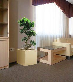 Озеленение гостиницы НГУ в Новосибирске