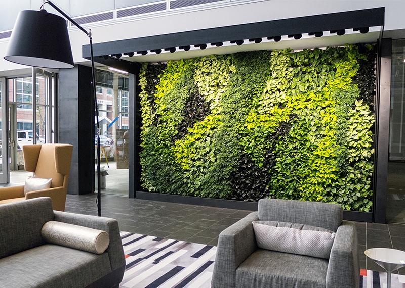 Способы озеленение офисных помещений