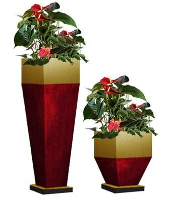 Модные кашпо для цветов и растений