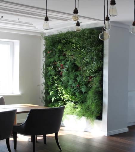 Озеленение квартир, домов - бизнес-идея