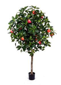 Деревья с цветами и плодами