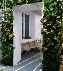 Арка из живых растений - Офис г. Санкт- Петербург