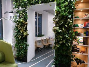 Арка из живых растений — Офис г. Санкт- Петербург