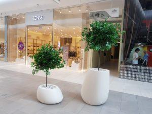 Озеленение торгового центра в Астане с помощью кашпо