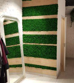 Озеленение стабилизированным мхом и искусственными растениями магазина одежды.